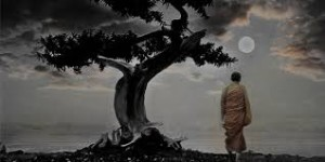 walking zen